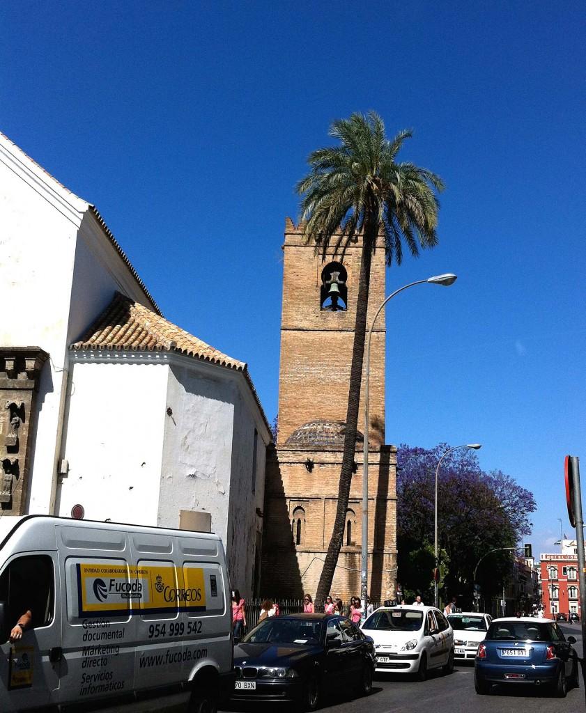 Palmera datilera y la iglesia de Santa Catalina de Sevilla