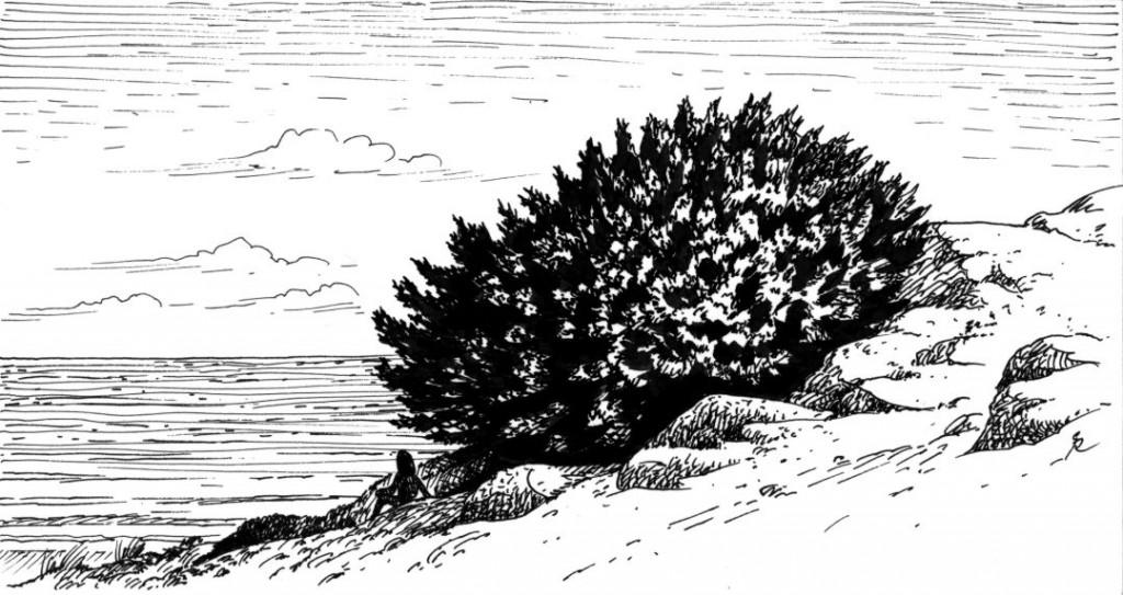 Mara a la sombra del enebro. Ilustración de Gabriel de la Riva.
