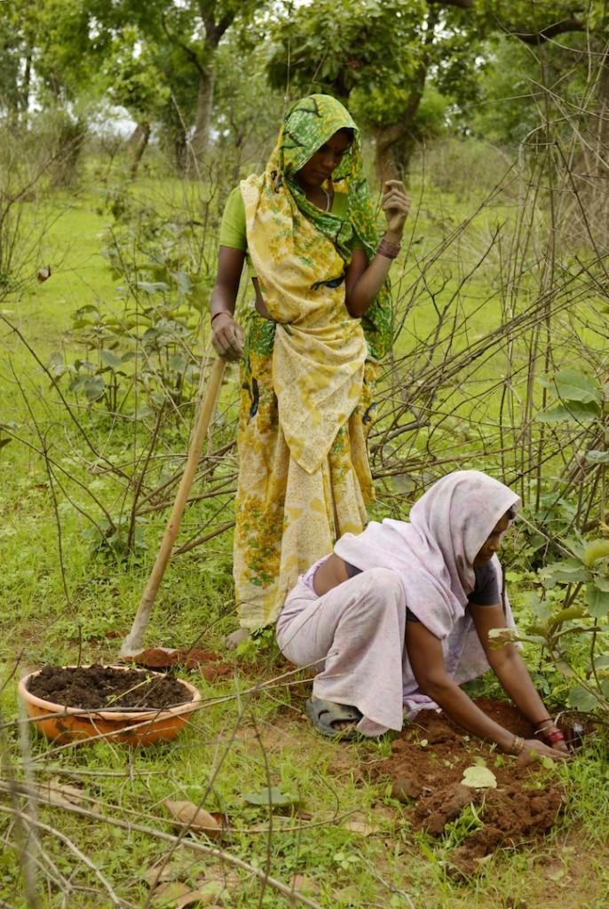 Dos mujeres indias plantando árbol