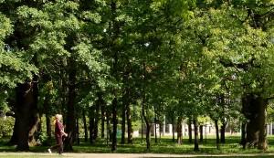 Kaunas_park