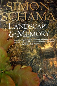 Landscape&Memory_cover