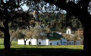 Ermita_Robledo_Constantina