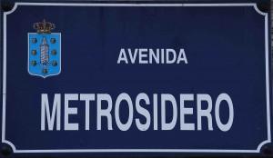 Avenida_metrosidero